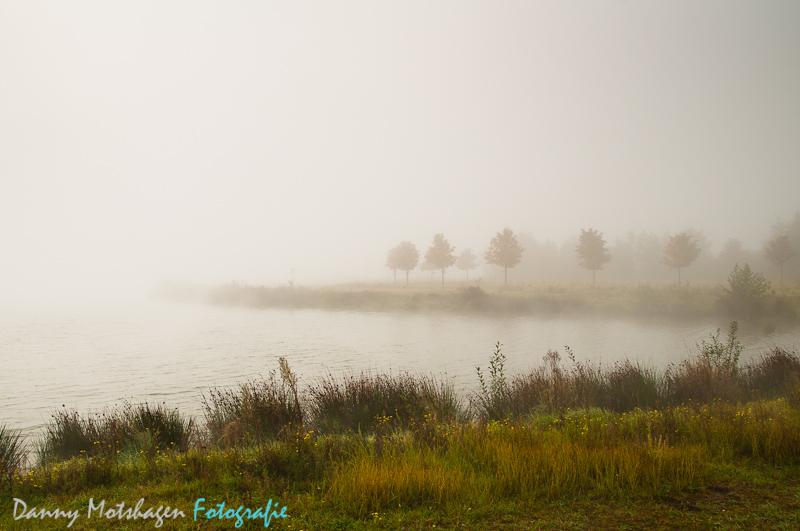 [:nl]Misty Morning[:en]Misty Morning[:]